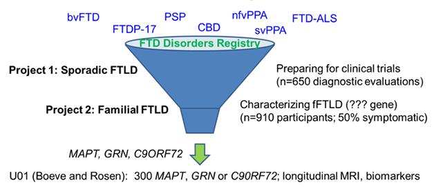 In its twin efforts to prepare participants for upcoming therapeutic trials and discover new familial cases, the ARFTL initiative welcomes people with all forms of FTD, both sporadic and hereditary. [Courtesy of Adam Boxer, UCSF.]