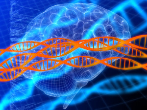 Brain DNA Precision Medicine
